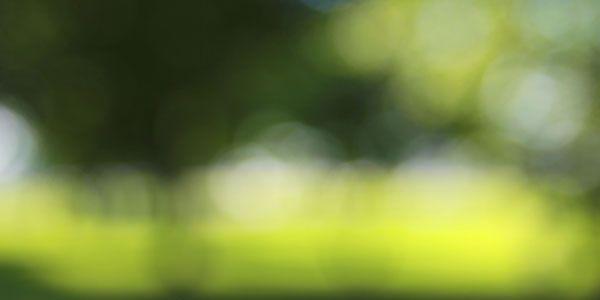 blur vision