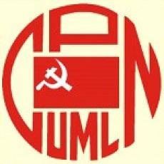 UML flag