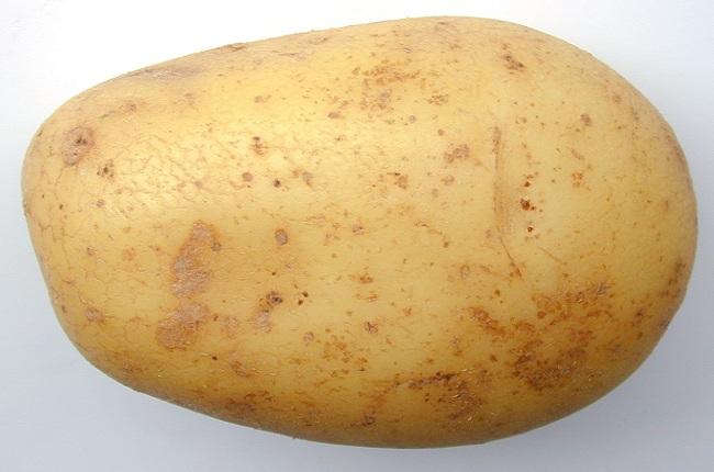 potato big