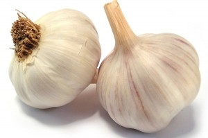 Garlic pp