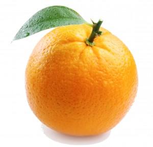 OrangeLT White Background
