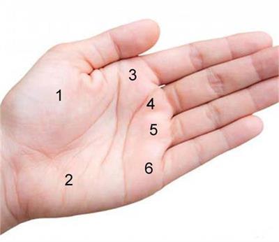 palm reading 1