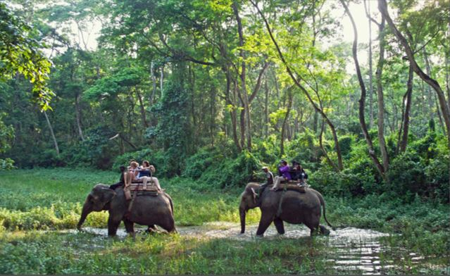 Chitwan emerging as popular film shooting destination