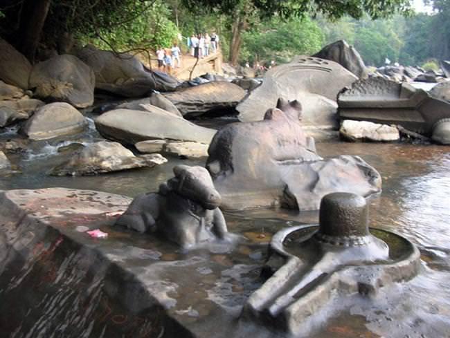Shalmala River (10)