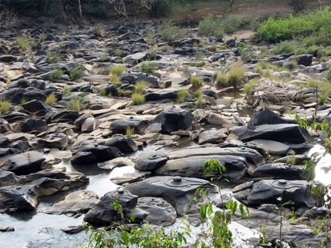Shalmala River (9)
