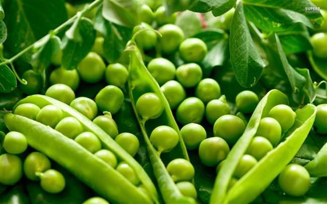 peas-17245-1920x1200