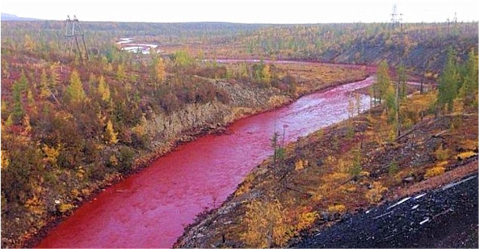 russia river red (2)