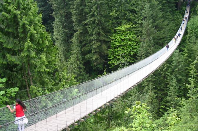 झोलुङ्गे पुल चुँडिदा ११ जनाको मृत्यु