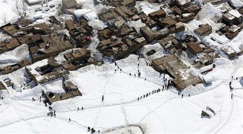 भरियासहित जापानी पर्यटकको मृत्यु