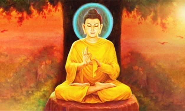 चित्त निर्मल पार्न चाहनुहुन्छ भने विपश्यना ध्यानको अभ्यास गर्नुस्
