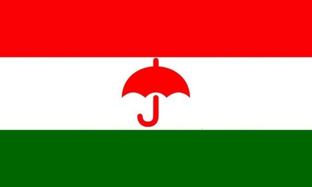 RJP-Nepal wins Matihani Municipality