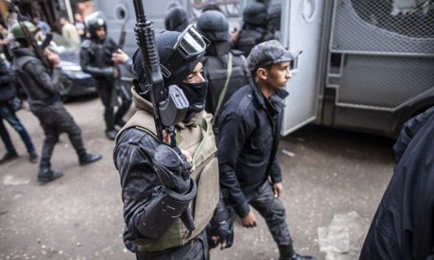 Egypt's army kills 14 terrorists in reprisal raids for mosque attack