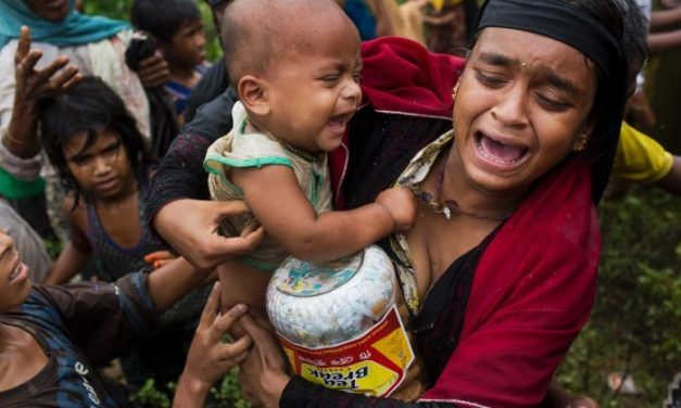 Bangladesh to build 14,000 shelters for Rohingya