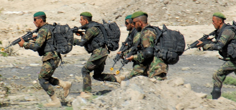 पाकिस्तानी कमाण्डो भारत छिरेको आशंका, हाइअलर्ट जारी