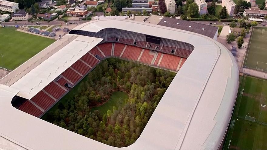 फुटबल स्टेडियममा ३ सय रुख (तीन तस्बिर)