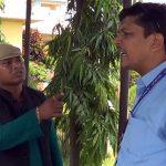 राजपा सांसदद्वारा बुद्ध एयरको काउण्टर तोडफोड